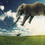 8 casos donde la imaginación impide interpretar sensatamente la realidad