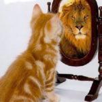 La soberbia del león